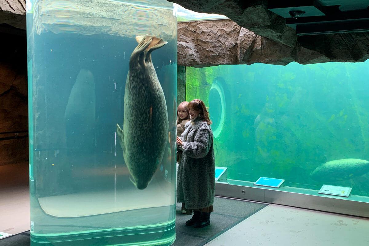 旭川市旭山動物園。左から中村里砂、野崎萌香 ©TBS