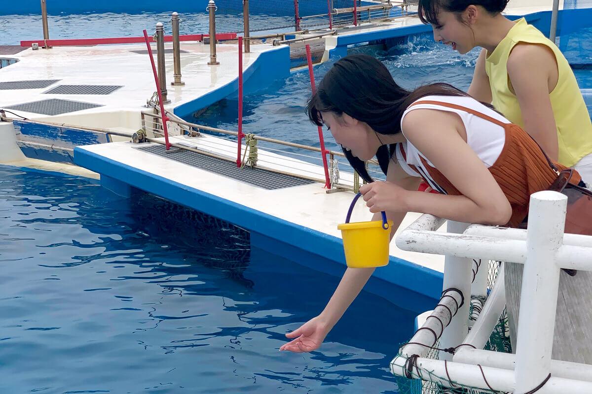 美ら海水族館。左から北向珠夕、華村あすか ©TBS